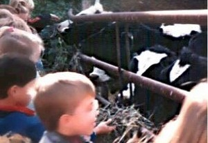 Children with Cows